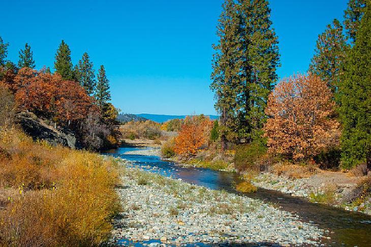 Scott River landscape